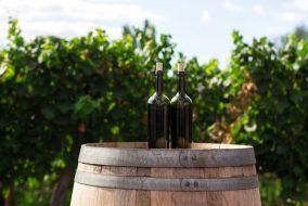 atelier_assemblage_vin